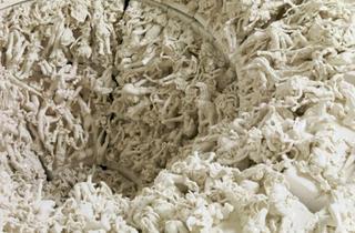 """Rachel Kneebone: Regarding Rodin"""