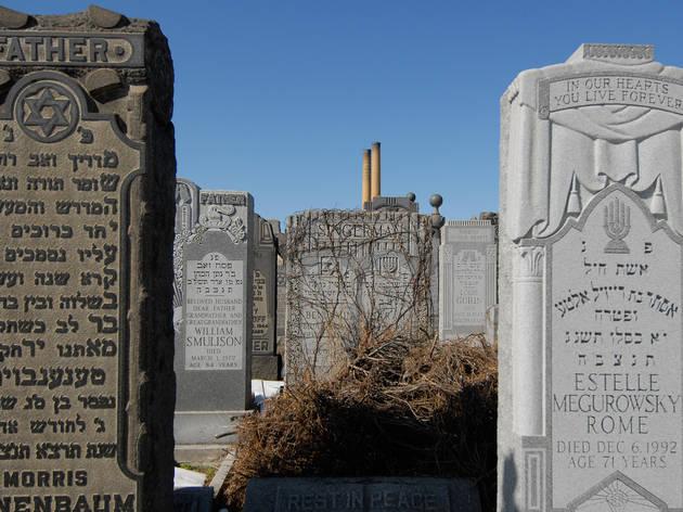 Mt. Zion cemetery (Photograph: Ed Glazar)