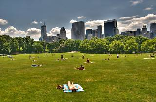 Sheep Meadow in Central Park (Photograph: Edward Yourdon)
