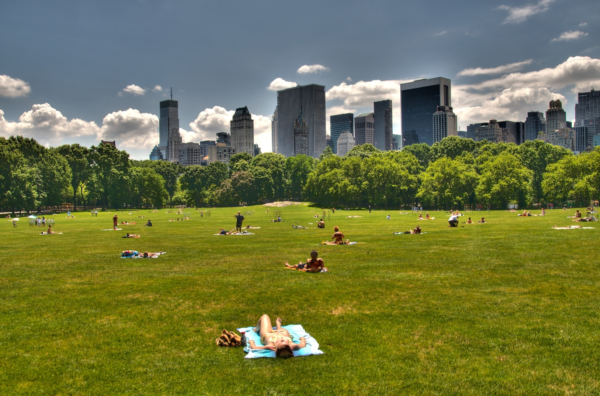 Best things to do in central park from boating to events for The meado