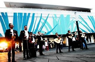 El Museo del Tequila y el Mezcal (MUTEM)