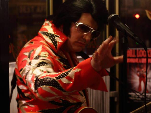 """Bill Looking (Comme le dit son site, Bill Looking est un sosie d'Elvis """"reconnu mondialement par les plus intransigeants : les Entreprises Elvis Presley"""".)"""