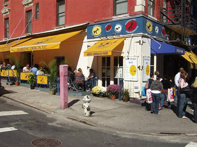 Dog Petting Cafe Nyc