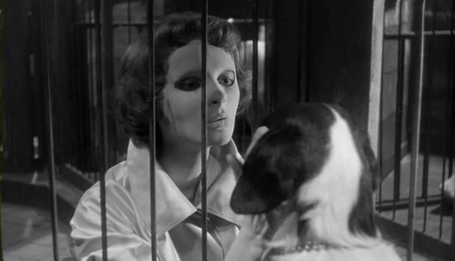 The 100 best horror films, horror movies, Les Yeux sans visage, eyes without a face