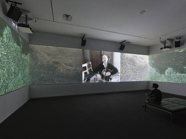 Werner Herzog's Hearsay of the Soul at Whitney Biennial 2012