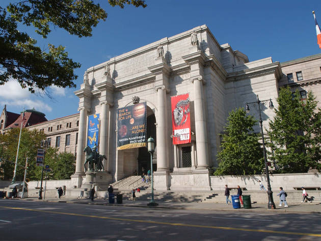 Go stargazing indoors at the American Museum of Natural History