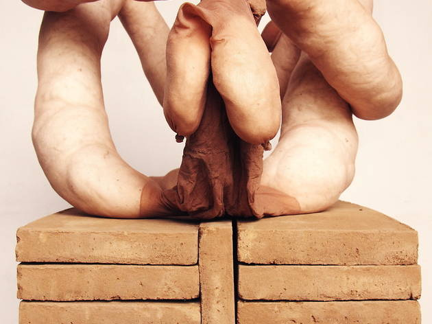 Sarah Lucas, Nuds