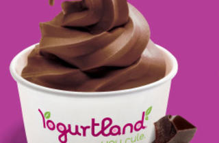 Yogurtland (CLOSED)