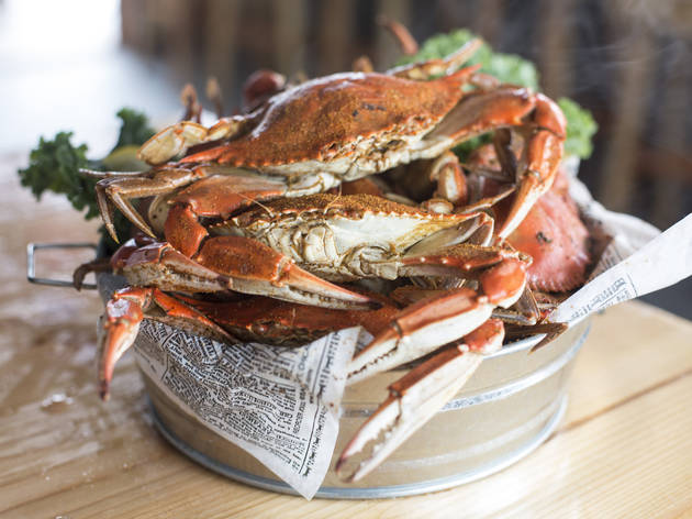 Steamed blue crabs at Brooklyn Crab