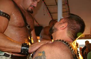 Sea Tea: Gay Pride Weekend Muscle Bears Cruise
