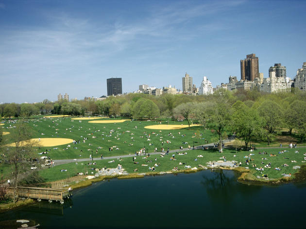Great Lawn, one of our favorite spots to picnic in Central Park