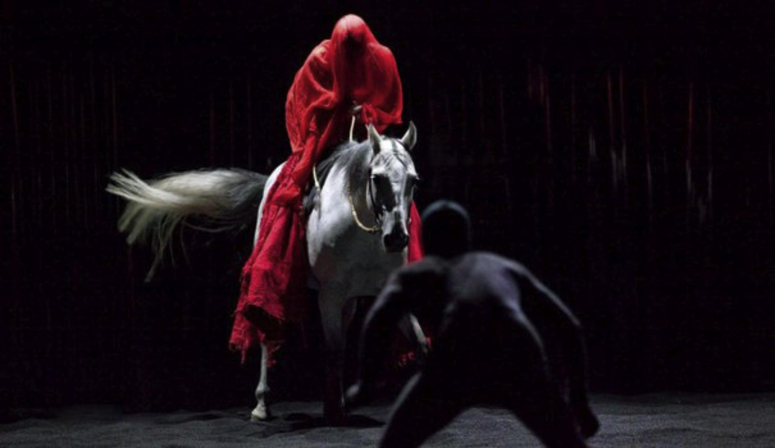 Les 50 spectacles à voir en 2012/2013