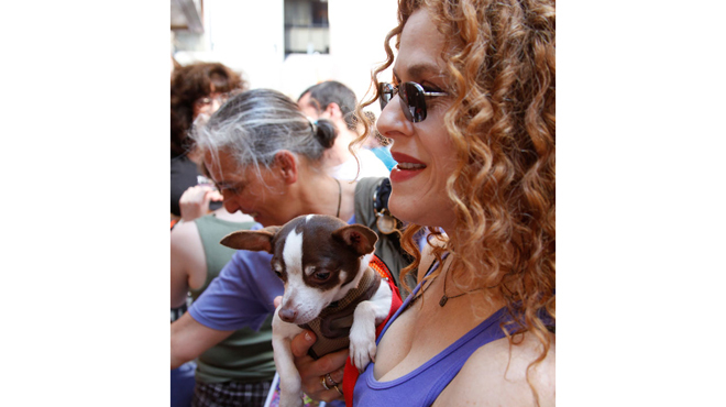 Broadway Barks connects stars and adorable dogs (2012)