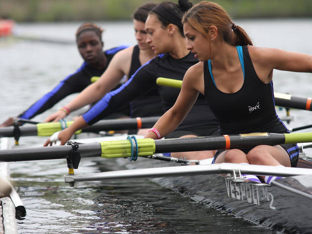 Quadruple sculls (rowing)