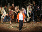 Into the Woods at the Delacorte Theater
