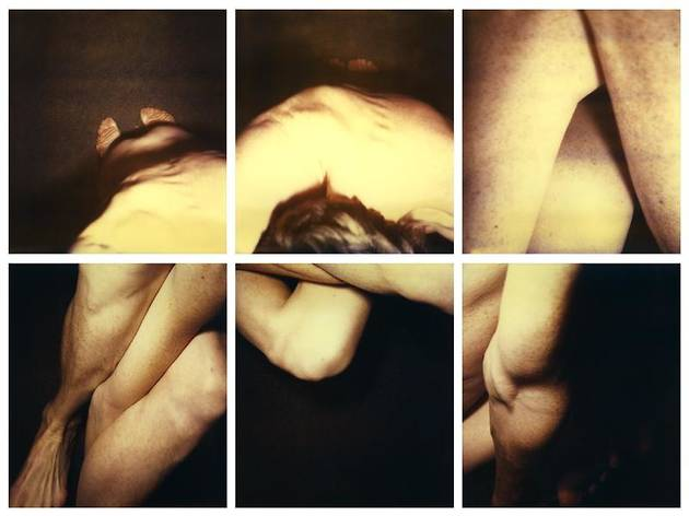 Hannah Villiger, 'Polaroids'