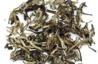 Sullivan Street Tea and Spice Company