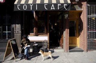 Coyi Cafe