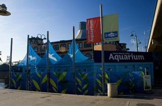 Earth Day Celebration at the Santa Monica Pier Aquarium