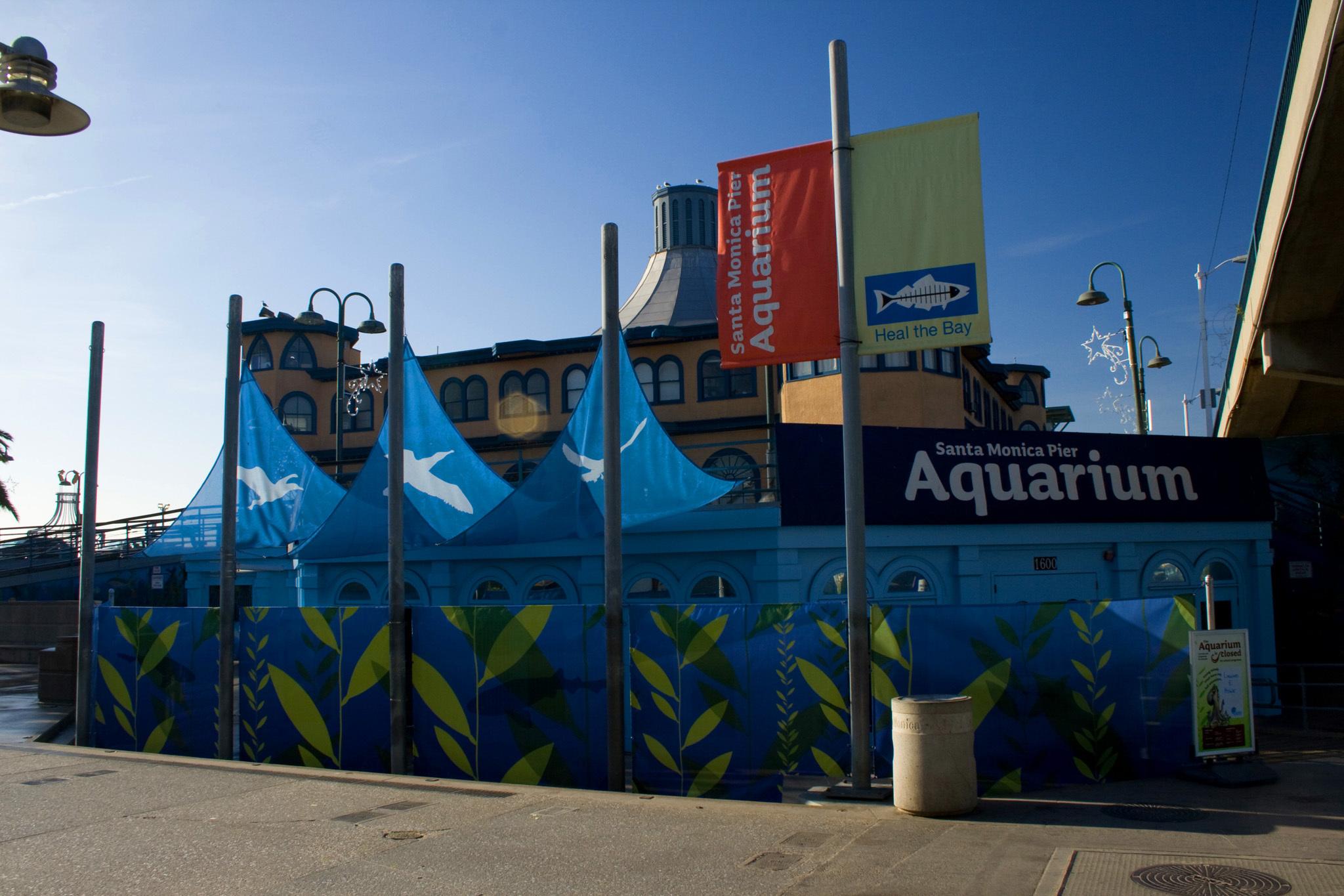 Santa Monica Pier Aquarium