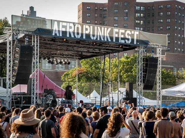 Reggie Watts at Afropunk Fest 2012