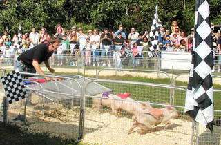 28th Annual Queens County Fair