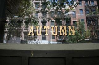 Autumn (CLOSED)