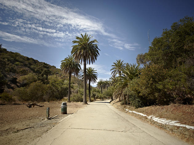 Best hikes in LA