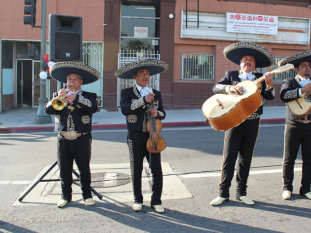 Go where the Mariachis are