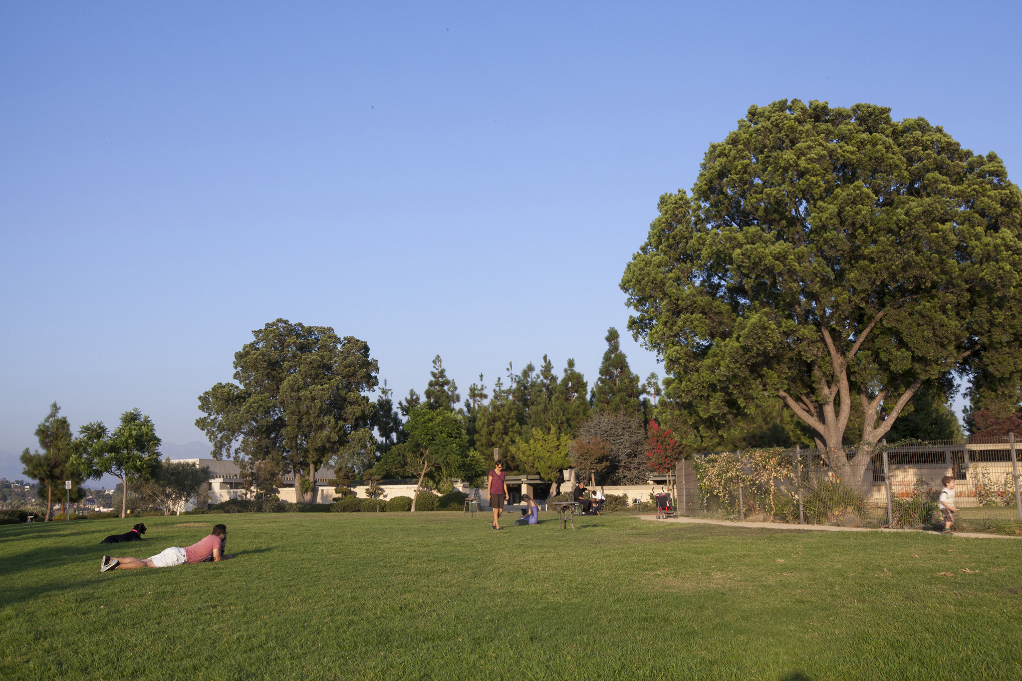 Barnsdall Art Park & Hollyhock House