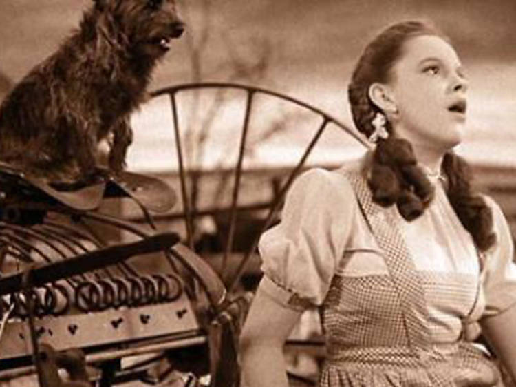 """""""Over the Rainbow,"""" Best Song, 1940, The Wizard of Oz"""