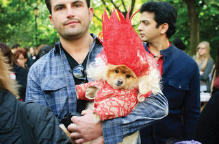 22nd Annual Halloween Dog Parade