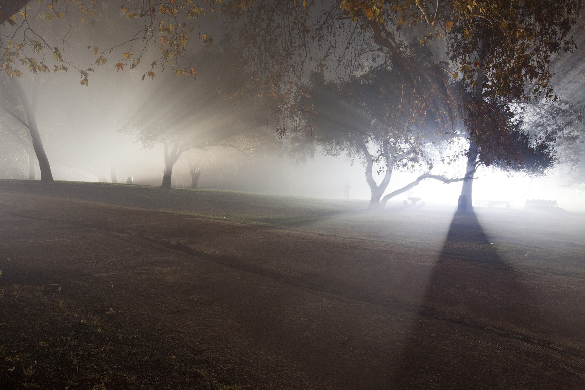 13 real haunted places in LA