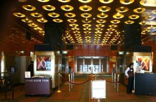 Radio City Music Hall (Vincent DeJardins)