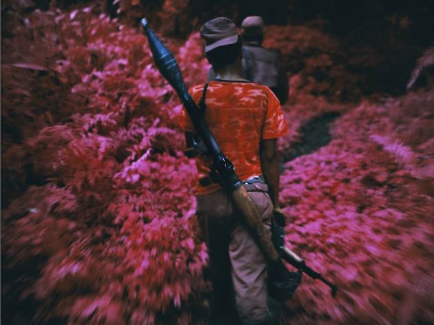 ( 'Ruby Tuesday', 2011 © Richard Mosse )