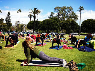 Yoga Classes By Donation And Free Yoga In Los Angeles