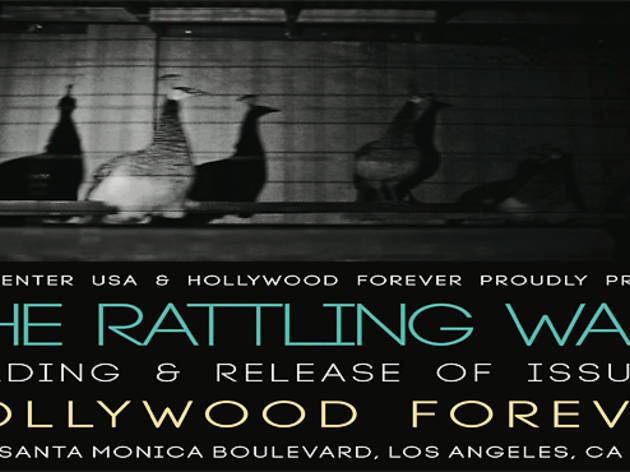 The Rattling Wall, Issue 3: Release & Reading
