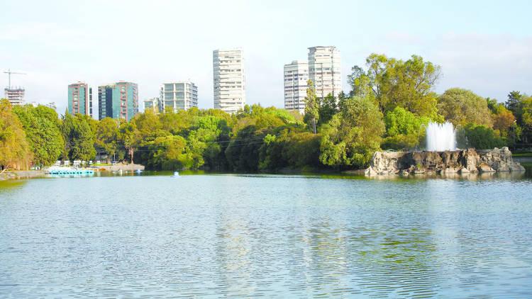Lago mayor
