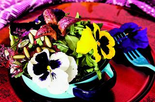 Ensalada de flores (Ariette Armella)