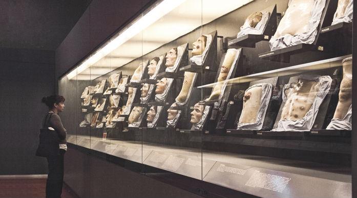 Museo de la Medicina