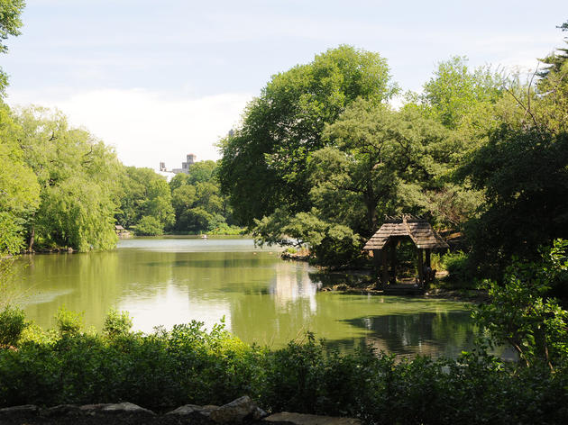 New York Super Saver: Central Park Attractions and Activity Day Pass