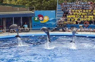 Zoo i Parc de la Ciutadella (© Marc Goodwin / Time Out )