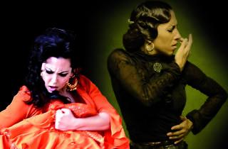 Només flamenc