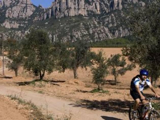Escapada al Baix Llobregat: pinceladas de norte a sur