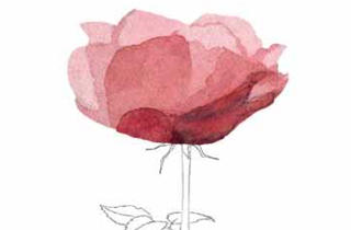 Concurs Internacional de Roses Noves de Barcelona