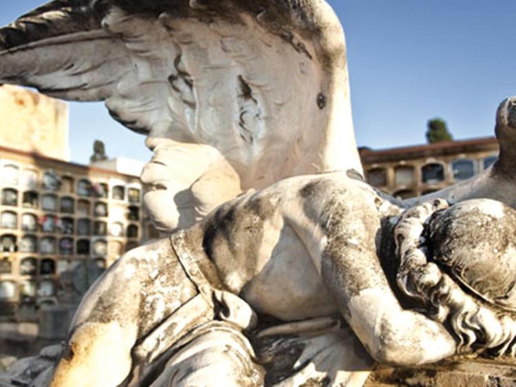 Sorprenderse en los cementerios de Barcelona
