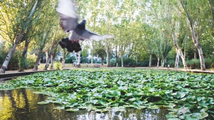 Bcn, museu a l'aire lliure (Feu clic a la fletxa de dalt per començar a explorar els museus de Barcelona a l'aire lliure.)