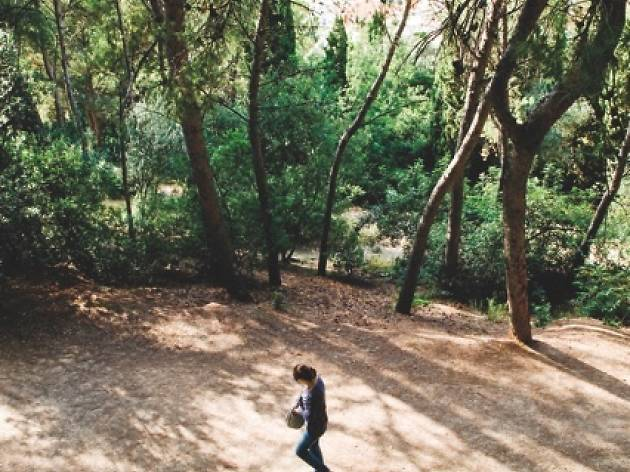 (Park Güell)