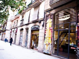 Joaquim Costa Raval