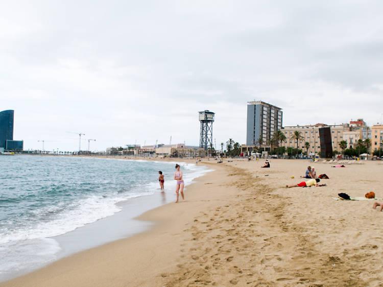 Barceloneta and the Ports